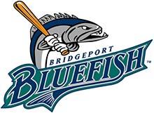 Bluefish Logo 220px
